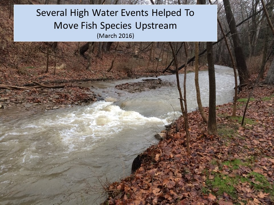 5. High Water Events